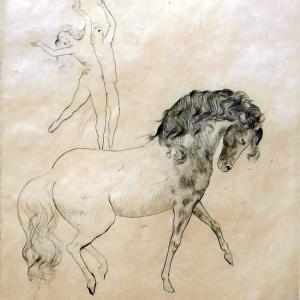 Exposición Grabados de Picasso. Picasso y el Circo